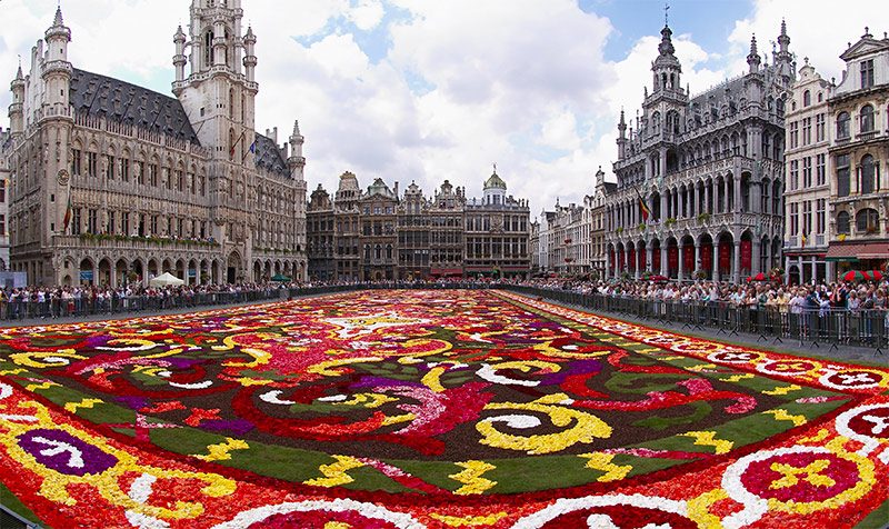 Brussels_floral_carpet